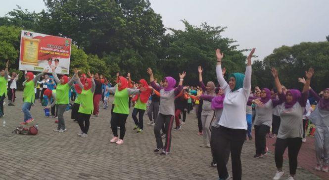 Puncak HKN 2018 Insan Kesehatan Senam Bersama