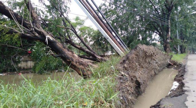 Putting Beliung Sapu Bekasi Utara, 20 KK Terdampak